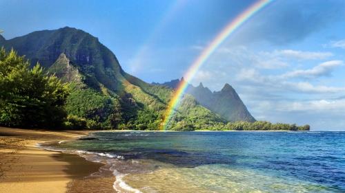 Hawaii-Beach-Wallpapers-11