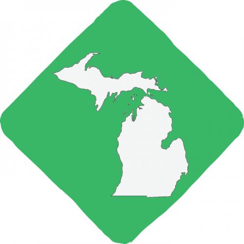 Michigan State Logo