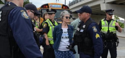 Lisa Savage arrested